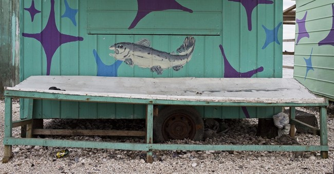 AP PHOTOS: Chilean fishermen struggle amid toxic algal bloom