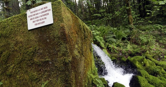 Oregon county says no to Nestle water-bottling plant