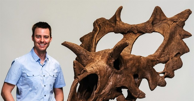 New horned dinosaur species discovered in Montana by amateur