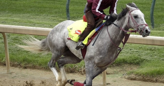 Feisty Lani to become first Japan-based horse in Preakness