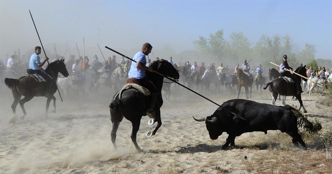 Spanish regional government moves to outlaw bull spearing