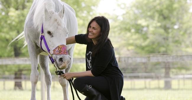 Ex-owner: Jon Stewart's horse used for kids' finger-painting