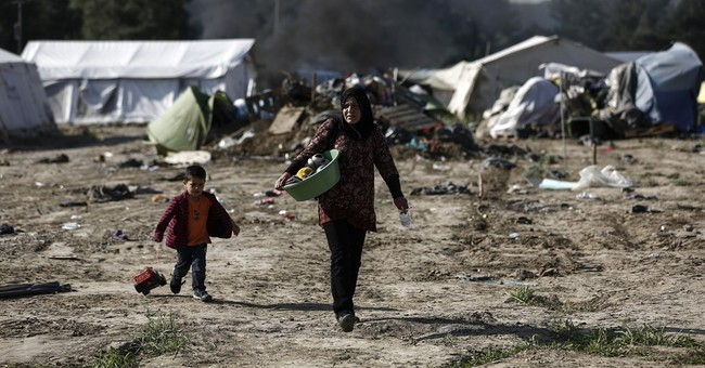 UNHCR concerned about conditions of evacuees from Idomeni