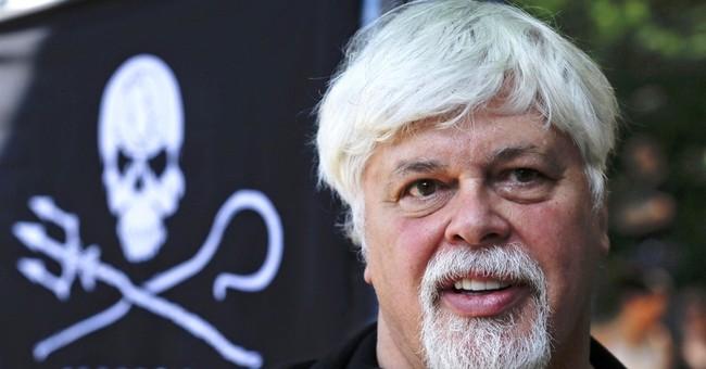 Sea Shepherd founder Paul Watson rams whalers for a living