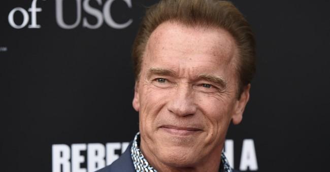 Elephant has brush with fame on Schwarzenegger's safari