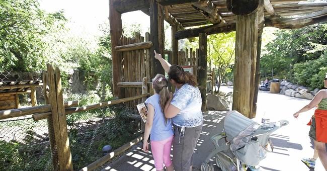 Leopard escapes at Utah zoo; visitors take shelter