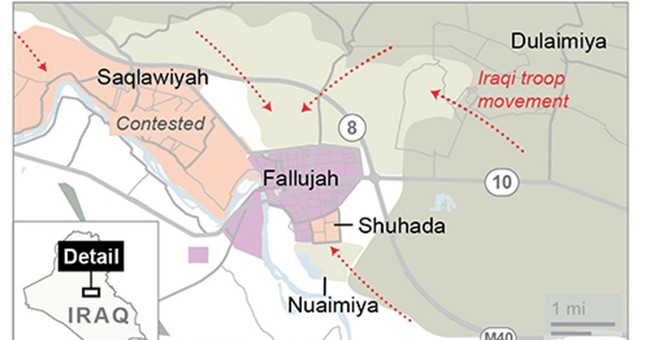 Iraqi troops in southern Fallujah for first time in 2 years