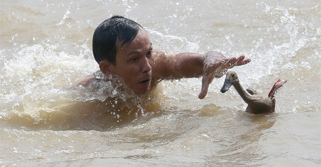 Image of Asia: Trying to catch a duck at Dragon Boat fest