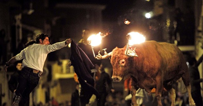 Spain: Valencia bans bull runs featuring flaming horns