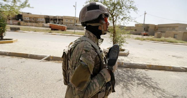 Iraq says most of Fallujah retaken from IS militants