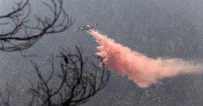 2nd firefighter dies battling huge Cyprus forest fire