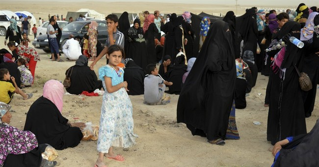 US-led coalition says only 1/3 of Fallujah cleared of IS