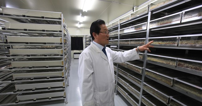 How mushrooms fueled a scientist's flight out of North Korea