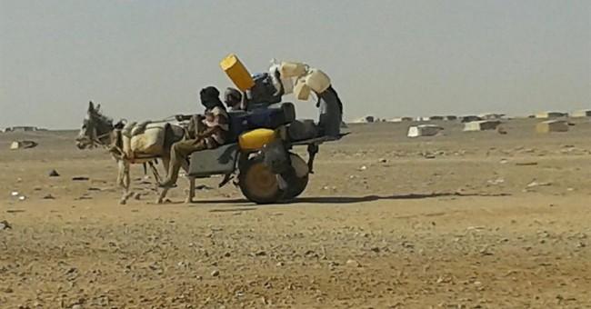 No food, little water for Syrians stranded on Jordan border