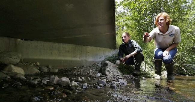 Appeals court: Washington must fix salmon-blocking culverts