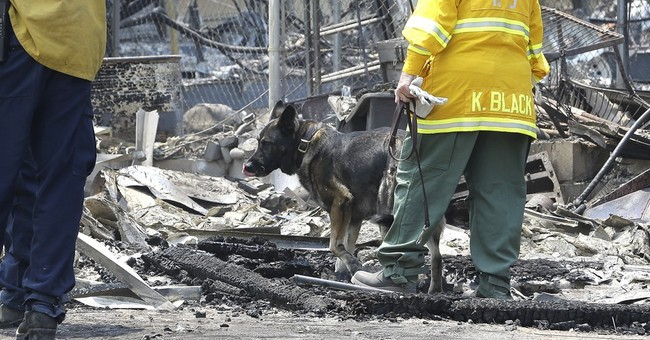 The Latest: Crews begin rehab in wake of New Mexico blaze
