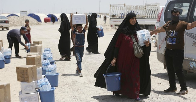 Iraqis suffer in desert camps after flight from Fallujah