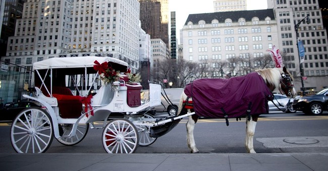 NYC carriage horse plan still needs council approval