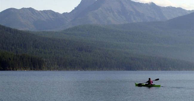 The Latest: No luck in search for killer bear in Montana