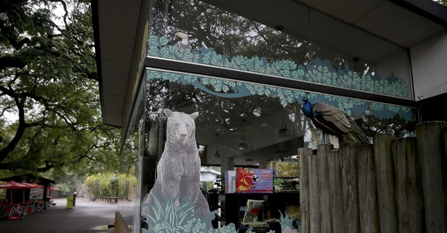 AP PHOTOS: Animals head for freedom as Argentina closes zoo