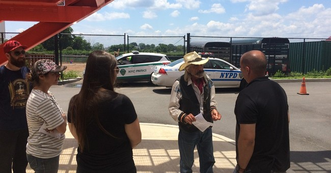 Cowboy who rode horse over bridge denies cruelty charges