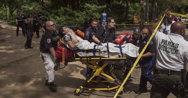 The Latest: Police: Amateur firework made Central Park blast