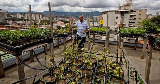 Economic crisis bares hunger problem in Venezuela