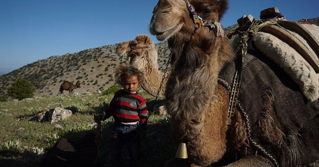 AP PHOTOS: Dry conditions in Turkey affect nomadic lifestyle
