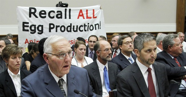 Court backs jail for Iowa egg executives in salmonella case