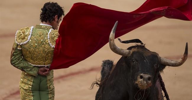 Spain: 6 gored in hair-raising Pamplona bull-run