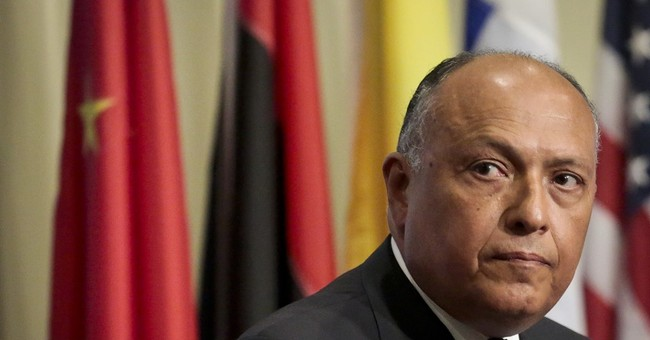 On rare Israel visit, Egyptian FM calls for 2-state solution