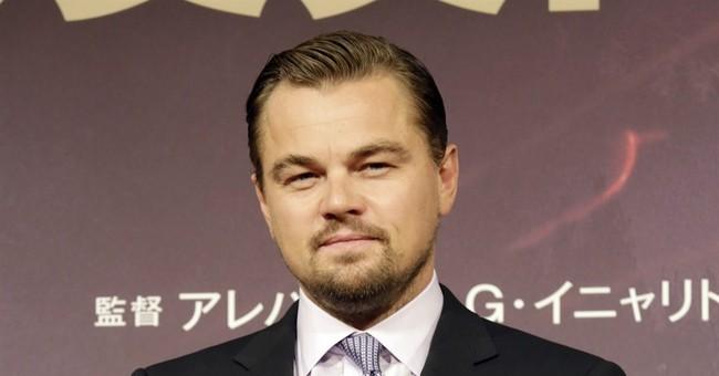 DiCaprio's foundation announces $15.6 million in grants