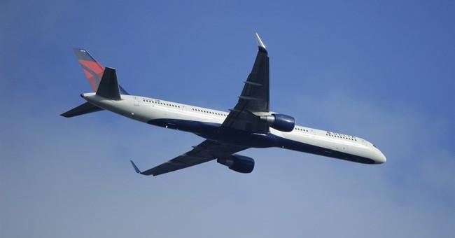 Delta's 2Q profit rises despite a dip in revenue