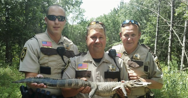 See ya later! Alligator captured on Minnesota bike trail