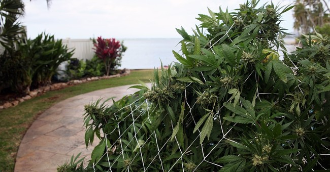 Hawaii pot dispensaries can legally open, but none are ready