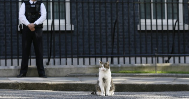 After a week in office, UK's May moves in to Downing Street