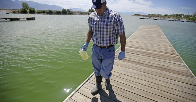 Toxic algae bloom swarms Utah Lake, seeps into farm supply