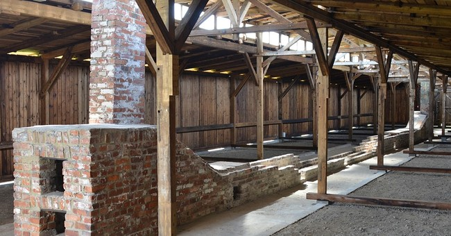 Conservation work completed on Auschwitz barracks