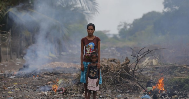 Sri Lanka to conserve climate-friendly mangroves ecosystem