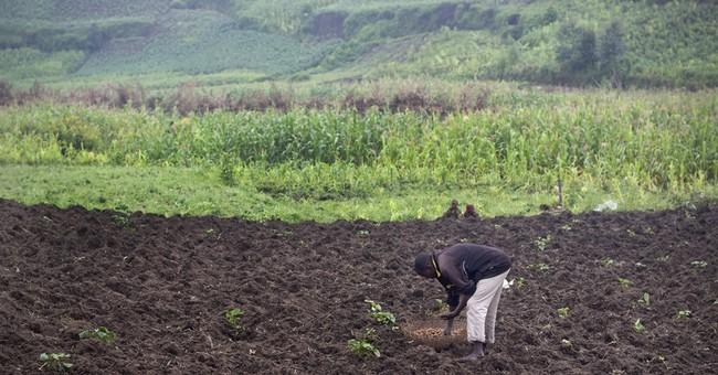 Burundi's economy on the brink as violent unrest persists