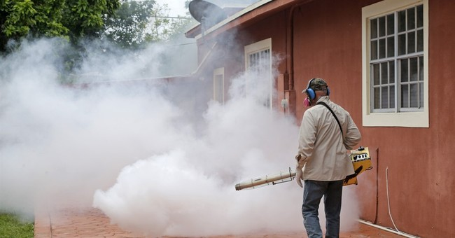 Homegrown Zika raises more questions about the evolving risk