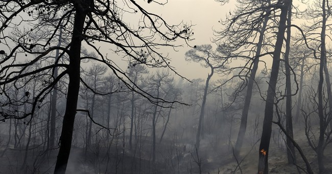 Large forest fire rages on Greek island of Evia for 3rd day