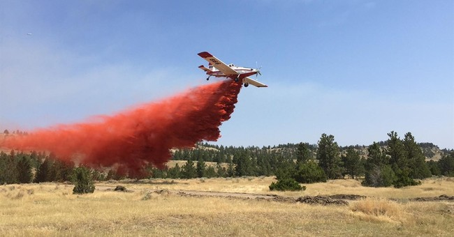The Latest: 16 homes destroyed by western Montana wildfire