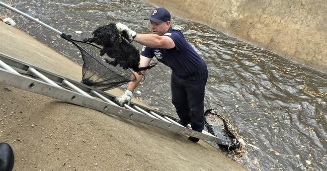 The Latest: Phoenix area kept under flood warning