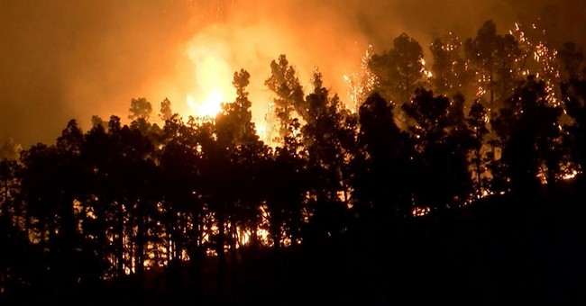 Thousands of firefighters battle forest blazes in Portugal