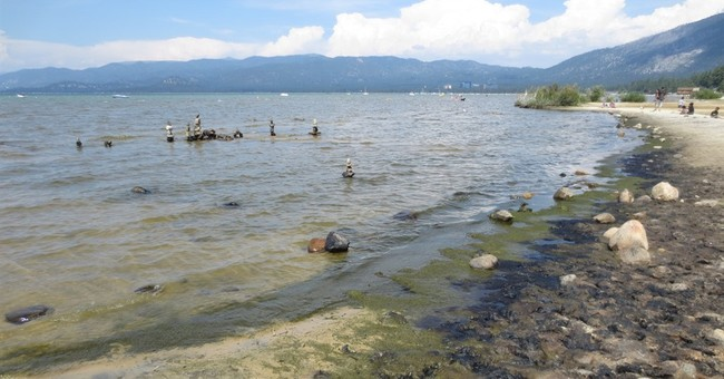 Researchers ask public for old photos of Lake Tahoe algae
