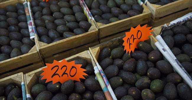 In Mexico, high avocado prices fueling deforestation