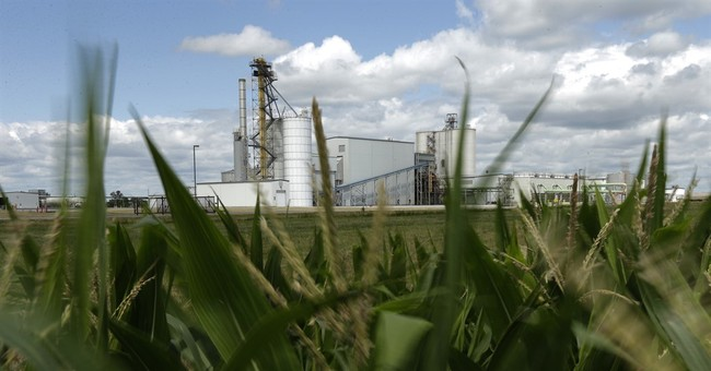 EPA watchdog says government fails to study ethanol's impact