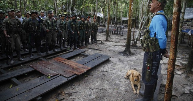Colombian rebel leader calls on US to free jailed comrade