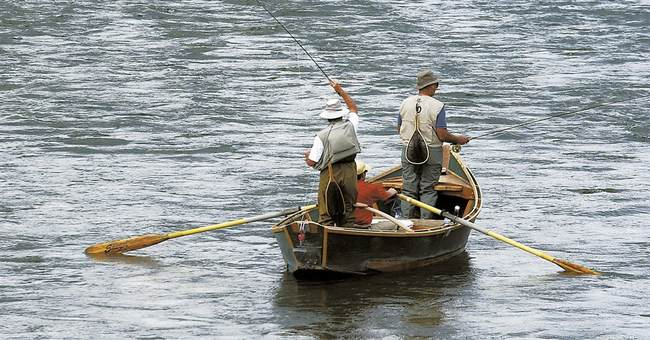 Popular Yellowstone River closes after thousands of fish die